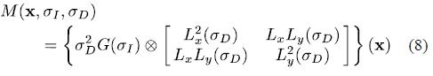 公式(8)