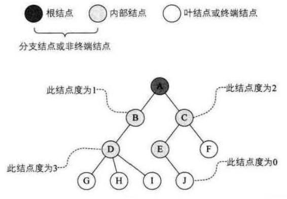数据结构-树的相关概念