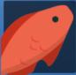 红色鹦嘴鱼