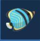 三角蝴蝶鱼