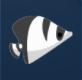 伯吉斯蝴蝶鱼