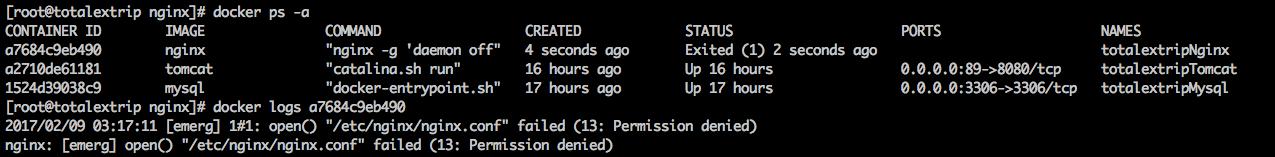 nginx_docker_error_pic.png-63.3kB