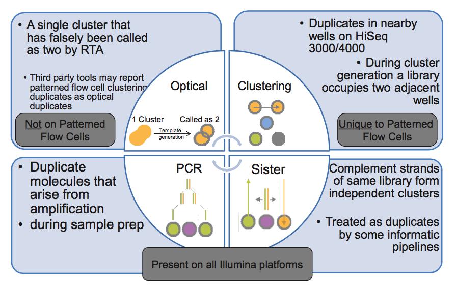 illumina 平台四种 duplicate 来源